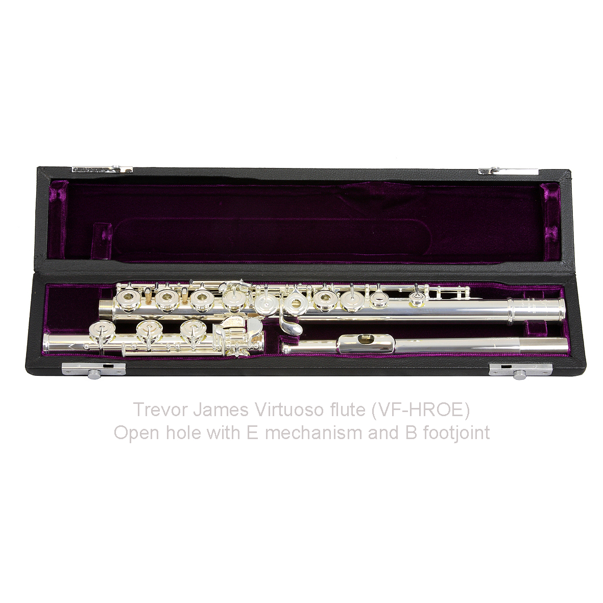 Trevor James Virtuoso Flute - Open Hole B Foot (31VF-HROE)