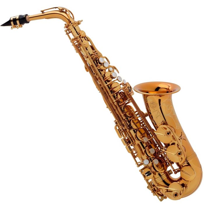 selmer paris alto saxophone reference 54 dark lacquer low sell prices in australia. Black Bedroom Furniture Sets. Home Design Ideas