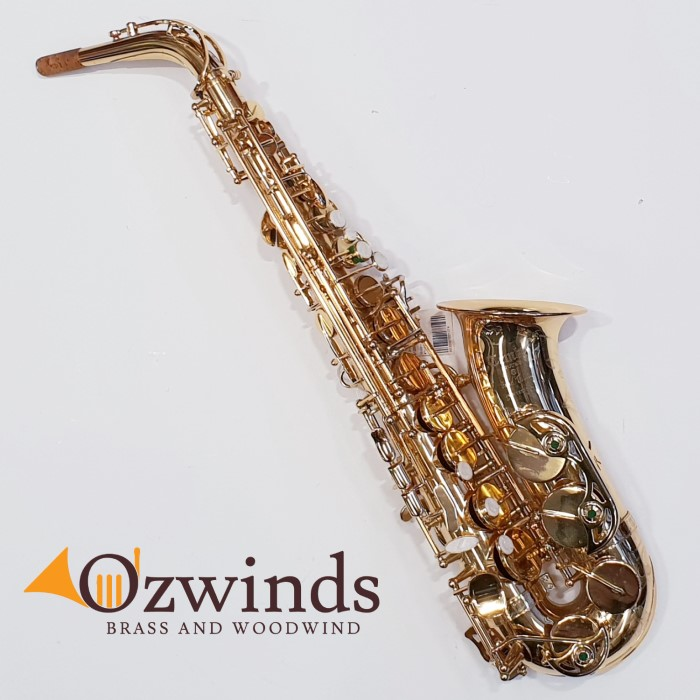 "Temby ""Professional"" Alto Saxophone #T02032"