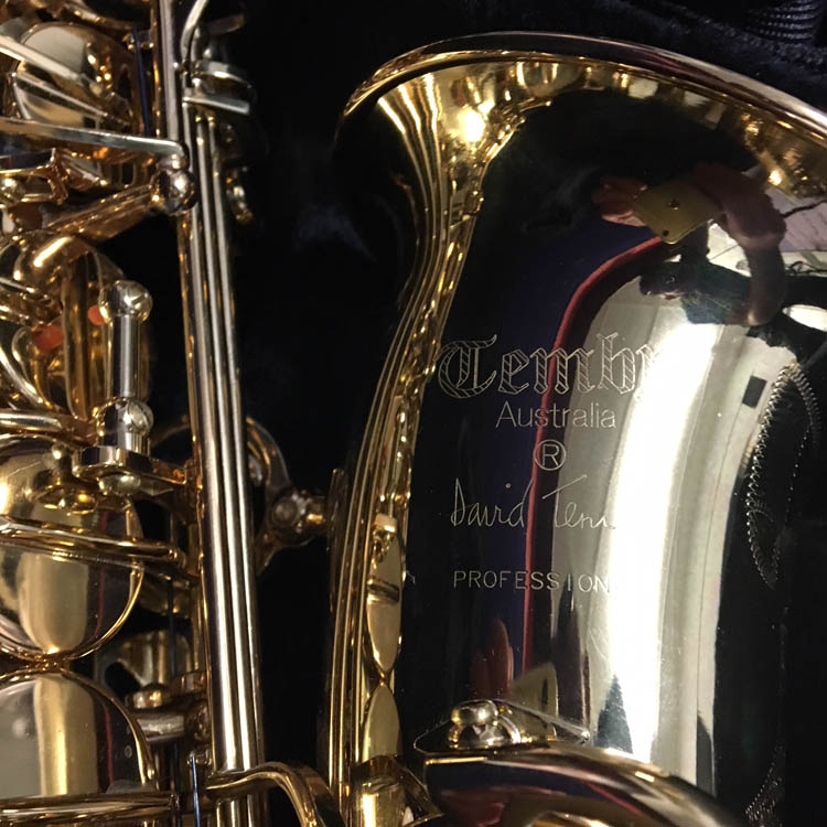 Temby Alto saxophone Gold Lacquered #T01987