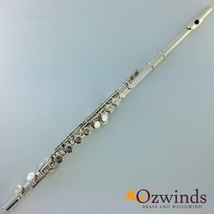 Temby Student Flute #T01005