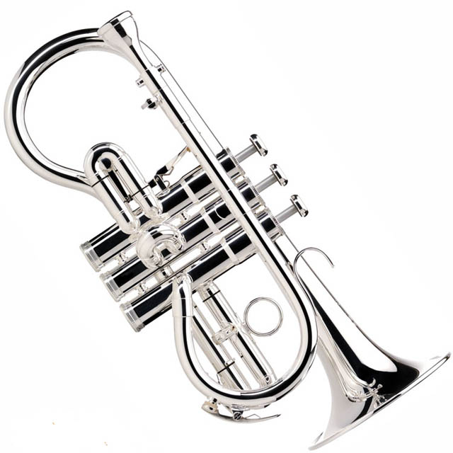 Besson BE924G Sovereign Soprano E-flat Cornet