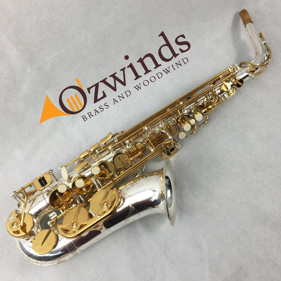 Temby Silver & Gold Custom Alto Sax (USED) #T01154